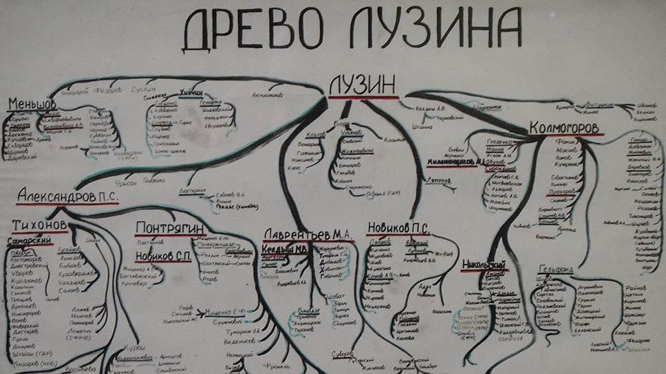 """В """"древе Лузина"""" фамилия Синая - на самой правой """"колмогоровской"""" ветке"""