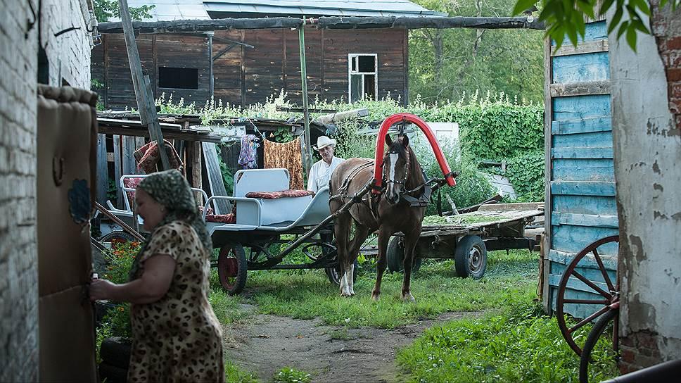 Хотя по местным дорогам лошади до сих пор — удобное средство передвижения, держат их тоже в основном для туристов