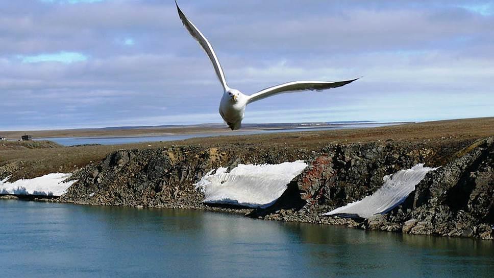 Край земли с высоты птичьего полета