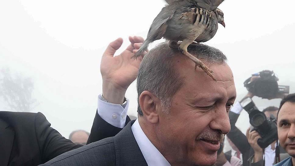Турецкое рондо
