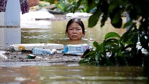 Тайфун вне политики