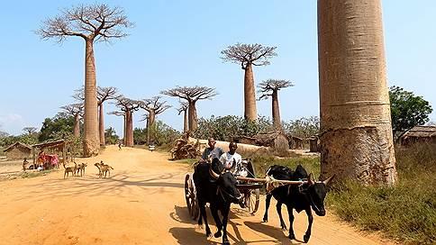 Путем запустения // Как Мадагаскар распорядился наследием колониализма? Личные наблюдения Марии-Луизы Тирмастэ