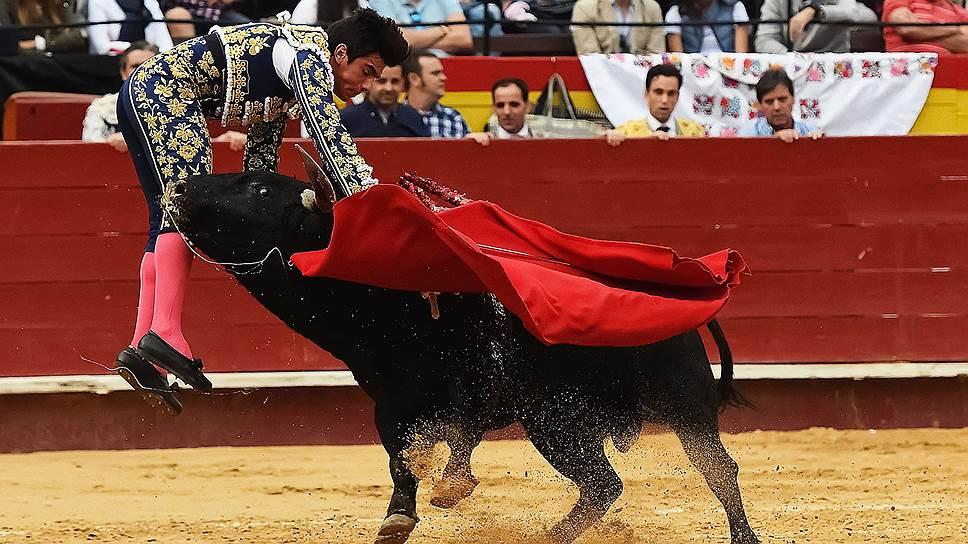 Почему испанцы не мыслят себя без корриды
