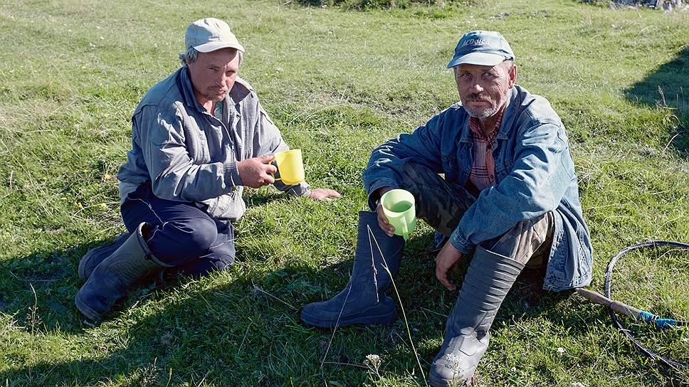 Пастухи-карелы Николай и Владимир знают немало слов на карельском