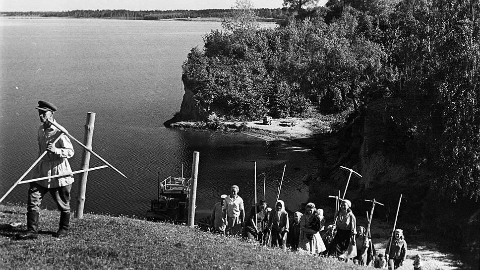 Освоение новых земель в послевоенном СССР не сделало сельское хозяйство эффективным