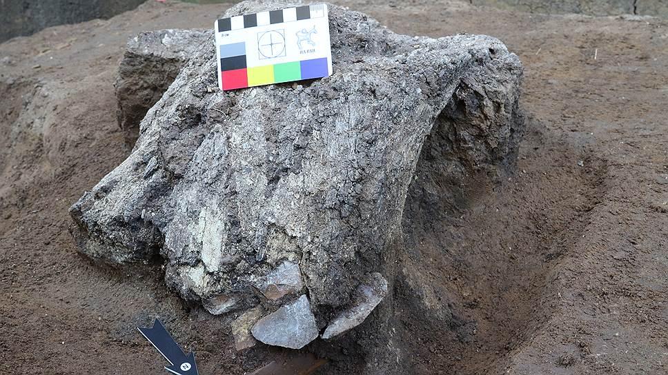 Останки черепа мамонта с каменными орудиями внутри
