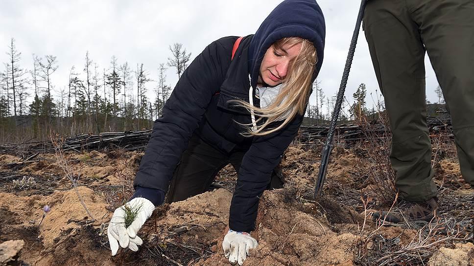 Как правильно сажать молодой лес, волонтерам объясняют лесничие