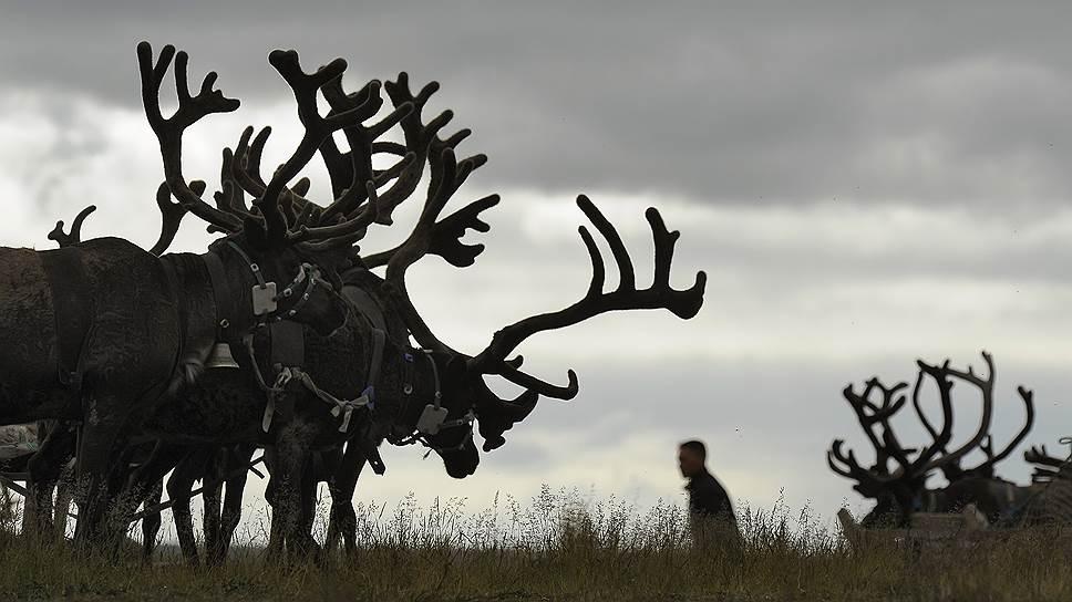 Как азиатская часть России может выиграть от  глобального потепления