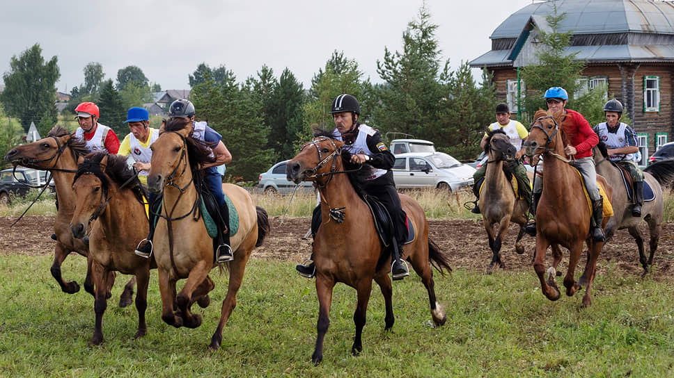 Скачки лошадей вятской породы на дистанции 1000 метров