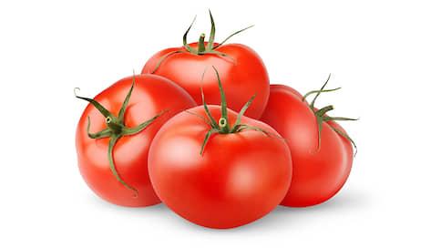 Кожица помидора // Сверхпрочная