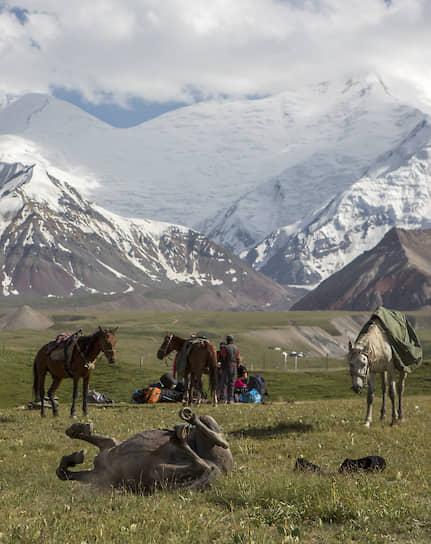 Базовый лагерь на высоте 3600 метров. Рейс с грузом наверх завершен. Лошадям можно отдохнуть. Их горная «карьера» длится не более четырех лет