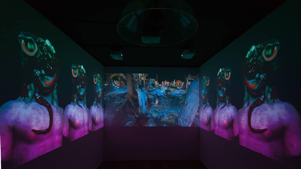 Видеоинсталляция Александра Шишкина-Хокусая «Кино для молодой змеи» — один из участников фестиваля «Киберфест»