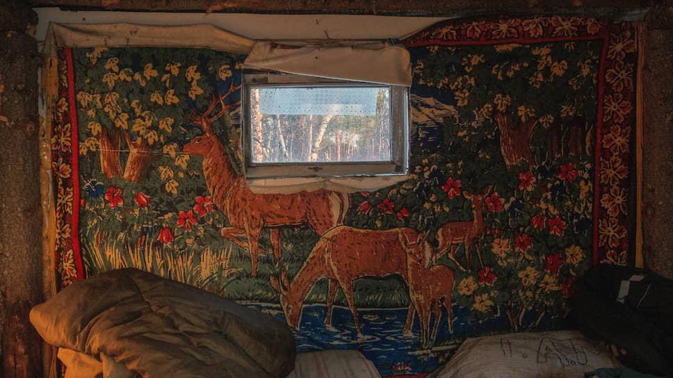 Это старый пастуший домик возле временной стоянки оленьего стада. У пастухов есть новый фургон, но предпочитают они жить в этом домике