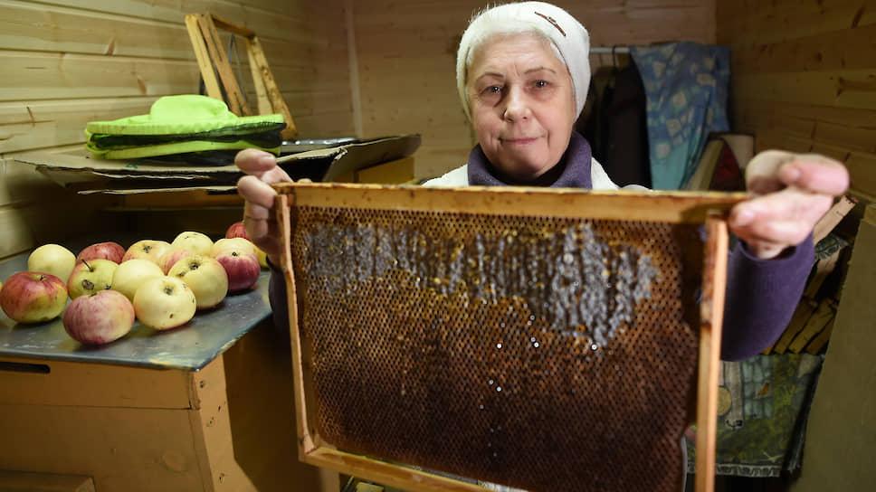 Ирина Масалова, в прошлом бухгалтер, переехала в Псковскую область с мужем пять лет назад, занимается пчеловодством