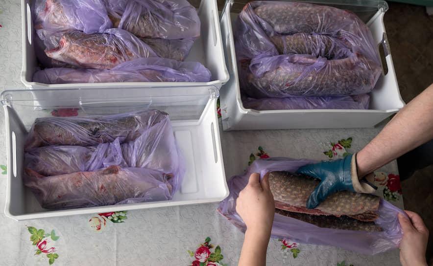 Богатый улов щуки с подледной рыбалки морозят на зиму