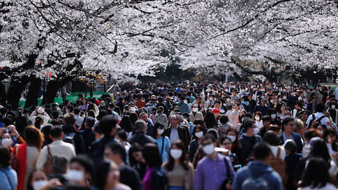 Сакура и вирус  / Как Япония не удержала режим