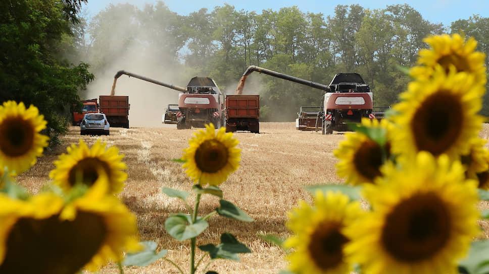 Былые урожайные рекорды в нынешнем году, похоже, побиты не будут