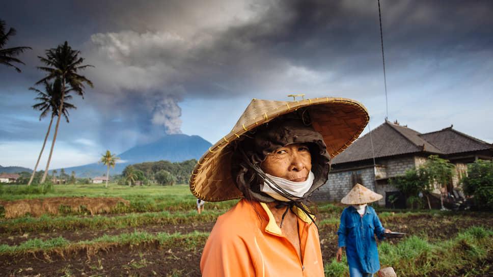 Индонезия остается одним из самых вулканоопасных регионов мира. Крестьянин на фоне извергающегося вулкана Агунг