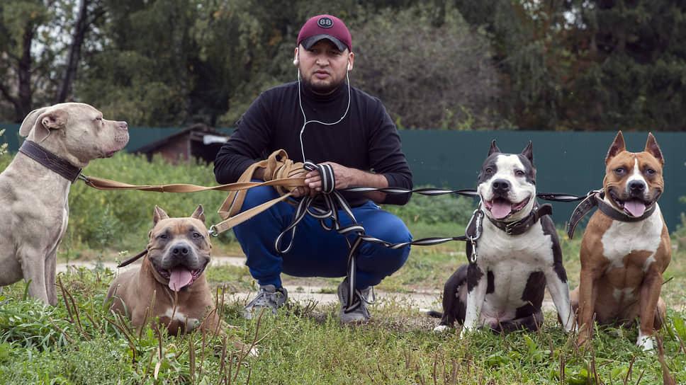 Муса возвращает собакам веру в человека
