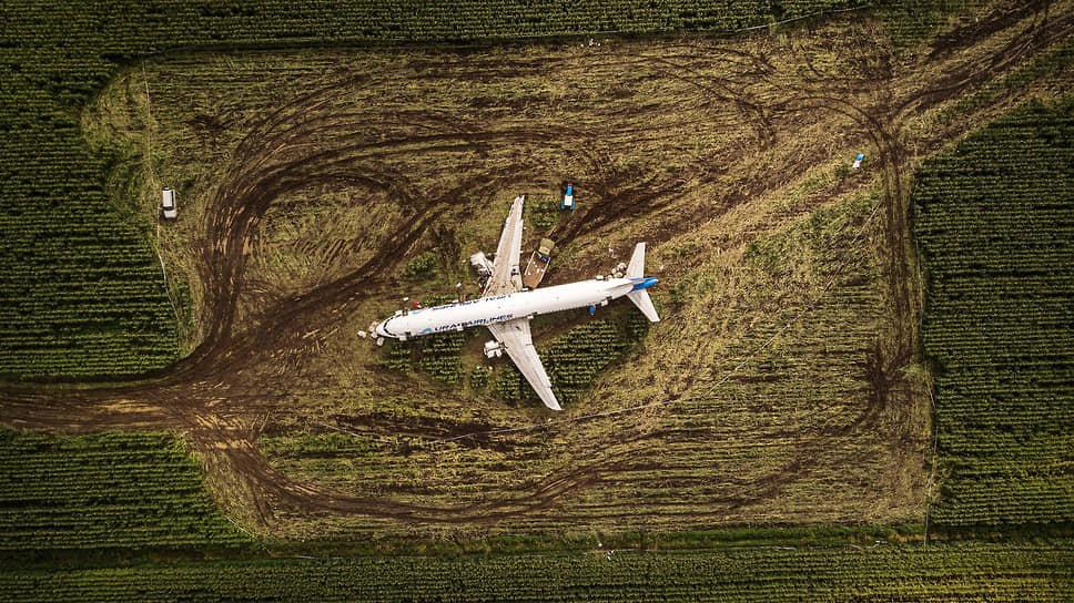 Аварийная посадка самолета Airbus A321 авиакомпании «Уральские авиалинии» вблизи аэропорта Жуковский 15 августа 2019 года