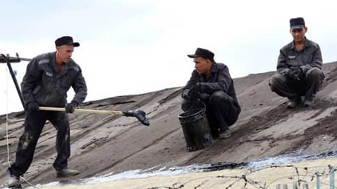 Арктика исправит?  / ФСИН намерена осваивать Заполярье с помощью принудительного труда