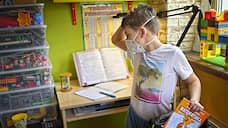 Зависшее образование  / Маша Трауб — о специфике дистанционного обучения