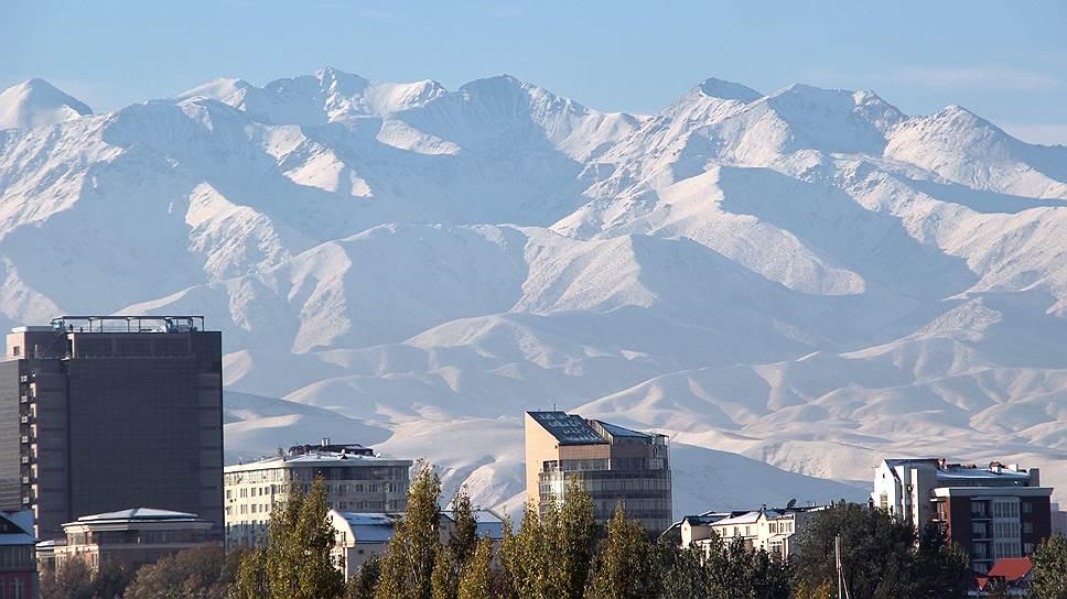 «Заменить Египет Киргизии никак не удастся»