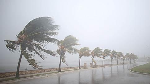 Куда бежать // Как власти помогают жителям Флориды спастись от урагана