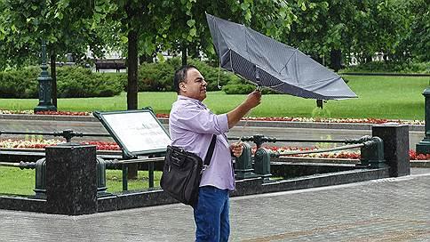 Жители столицы поборются со штормовым ветром // Какая погода ждет москвичей в уикенд