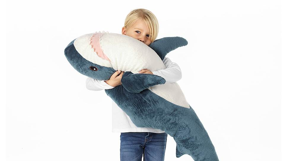 Потрясающие фотографии акул   ФОТО НОВОСТИ   544x968