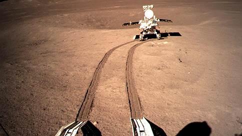 Растения из Китая дали побеги на Луне // Чем важны результаты космического эксперимента