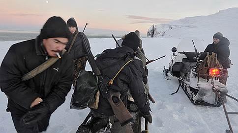 Отловщики белух и косаток пожаловались Владимиру Путину // Почему браконьеры утверждают, что выловили животных без нарушений закона