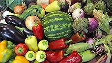 Сын Романа Абрамовича останется без дальневосточных овощей
