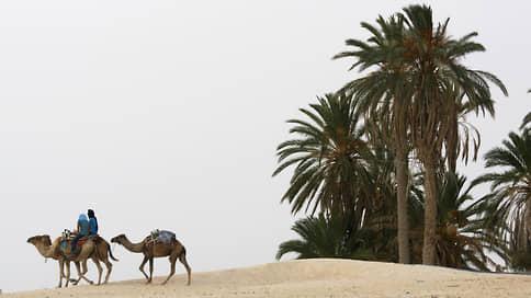 «Можно встретить рассвет в пустыне»  / Петр Воронков — о Тунисе