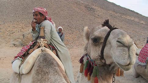 Египетские курорты готовятся встречать туристов  / Во сколько россиянам обойдутся путешествия в Хургаду и Шарм-эш-Шейх