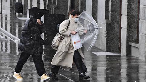Снег и пробки сковали Москву // Что усугубляет дорожную ситуацию в городе