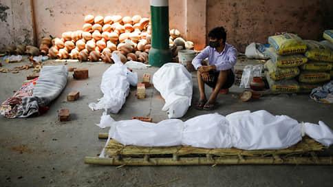 Индия столкнулась с COVID-апокалипсисом  / Опасен ли для России новый штамм коронавируса