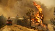 Пожары не дошли до курортов