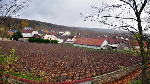 Французские вина накрыли холода // Стоит ли ожидать дефицита продукции на прилавках