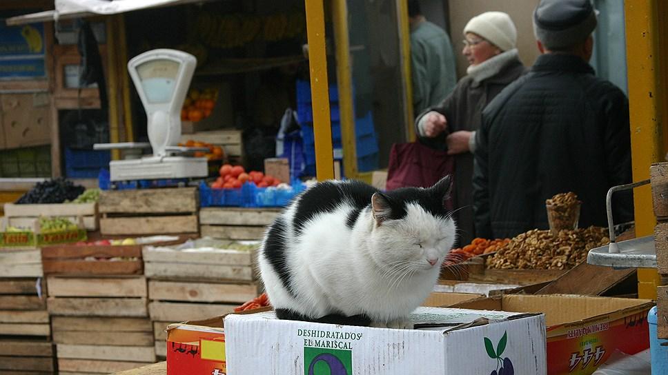 Палаточный городок / Бизнесу на три года вернули право торговать в киосках в центре Копейска