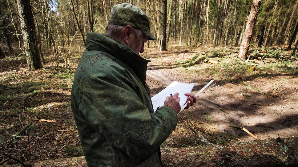 В управлении лесами считают, что реформа избавит лесников от бумажной волокиты и позволит сосредоточиться на патрулировании