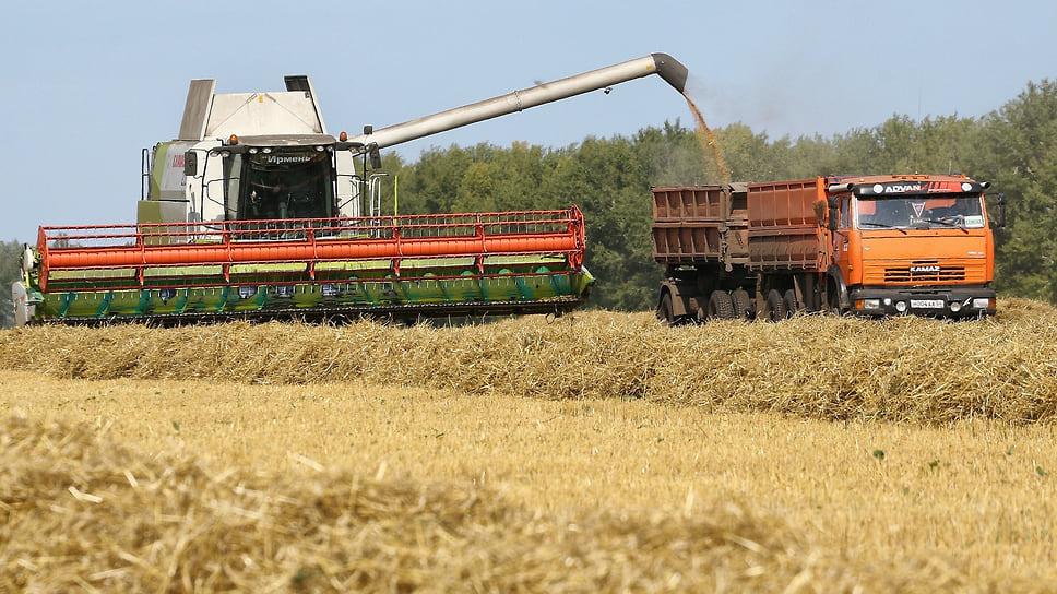 Урожайность поддержат льготами / Алексей Текслер предложил снизить налоговую ставку для аграриев в два раза