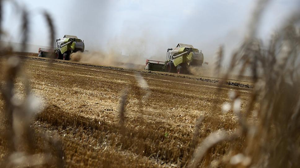 Аграриям помогут оправиться от засухи / Сельхозпроизводителям Челябинской области компенсируют 500 млн рублей на приобретение семян и кормов