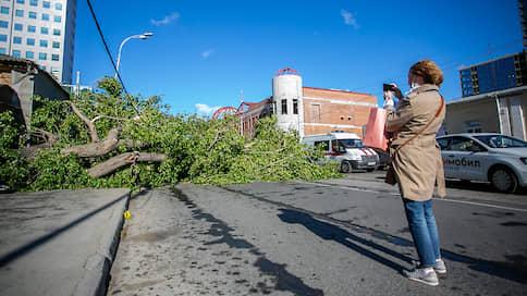 Ураган принес четыре уголовных дела // Из-за непогоды на Урале погибли четыре человека