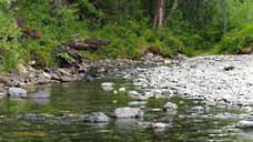 Доля охраняемых природных территорий на Урале достигнет 8% к 2030 году