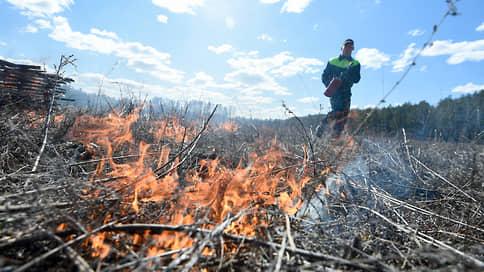 В лесах Тюменской области из-за пожаров введут режим ЧС