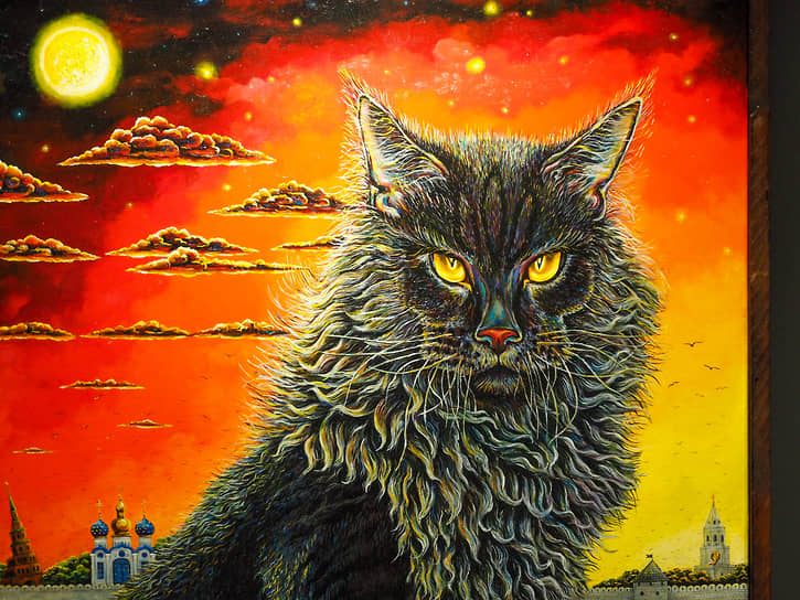 Отдельное внимание казанским котам