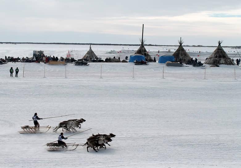 Оленеводы во время традиционных соревнований на оленьих упряжках
