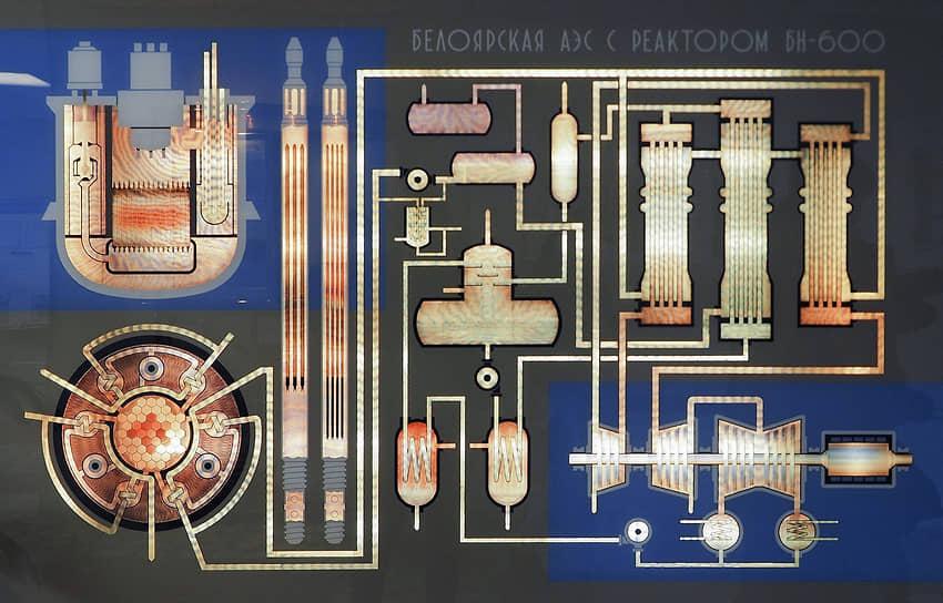 Первый энергоблок был введен в работу в апреле 1964 года. Сейчас в эксплуатации находятся третий и четвертый энергоблоки с реакторами на быстрых нейтронах БН-600 (с 1980 года) и БН-800 (с 2015 года).