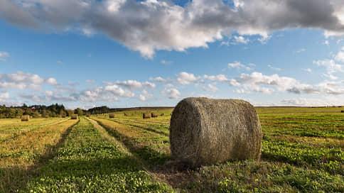 Аграрная независимость  / Как развивается сельскохозяйственная отрасль в Свердловской области